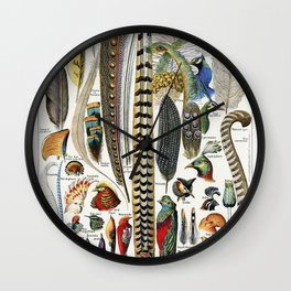 Vintage Botanical Print - Plumes - Feathers Wall Clock