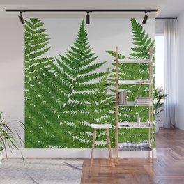 Summer Ferns Wall Mural