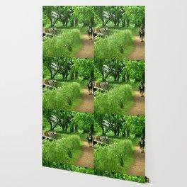 Tivertonian Spring Wallpaper