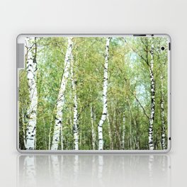 the birch forest III Laptop & iPad Skin