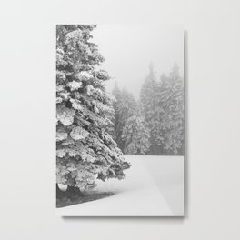 Snow Covered Tree In Winter Forest Landscape Metal Print