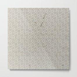 spc6 Metal Print