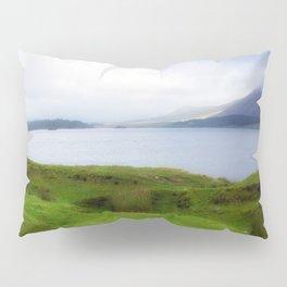 green grass carpet Pillow Sham