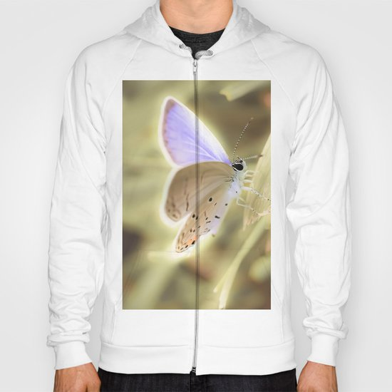 Purple Butterfly Hoody