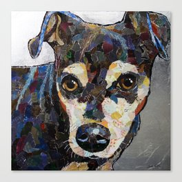 Dog with silver background Canvas Print