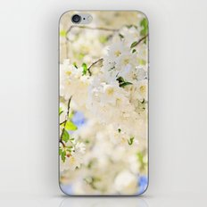 Delicate White Cherry Blossoms  iPhone & iPod Skin