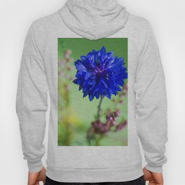 Beauty of blue cornflower Hoody