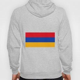Armenia Flag Hoody