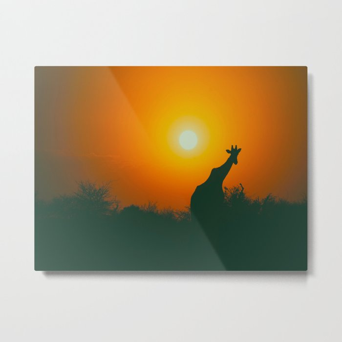 Lonely Sunset Giraffe Metal Print
