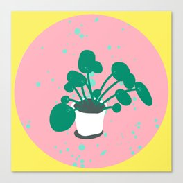 Money Plant Canvas Print