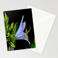 Water Clings to Beauty Stationery Cards