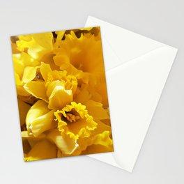 Daffs Stationery Cards