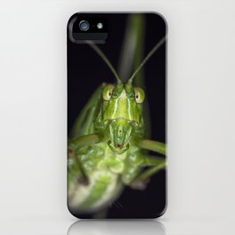 Curious Katydid iPhone Case