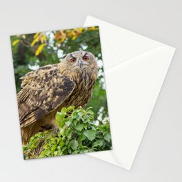 The owl is watching you Stationery Cards