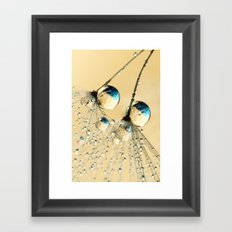 Duo Shower Dandy Drops Framed Art Print