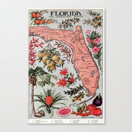 Vintage Map of Florida (1917) Canvas Print