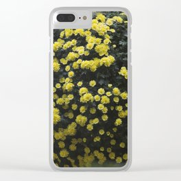 Longwood Gardens Autumn Series 222 Clear iPhone Case