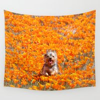minnie Wall Tapestries featuring Yorkie in Poppies by Sue Liberto Photography