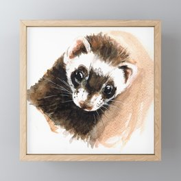 Ferret portrait Framed Mini Art Print
