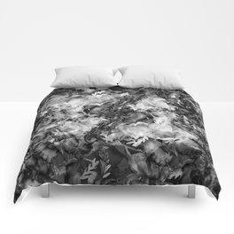 dimly Comforters