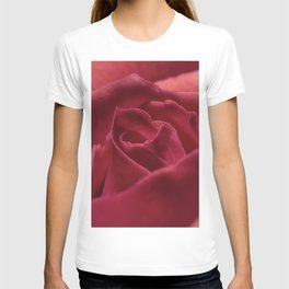 Red Rose Close Up T-shirt