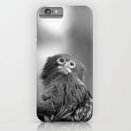Close Up Pygmy Marmoset Monkey In A Tree In Black And White iPhone Case