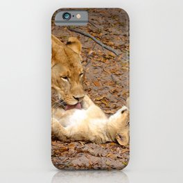 Bath Time for Lion iPhone Case