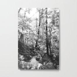 The Woods 1 Metal Print