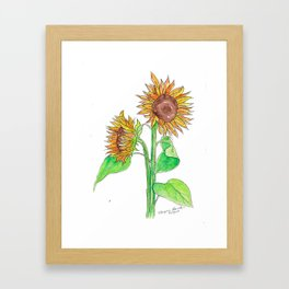Sunflowers 2 Framed Art Print