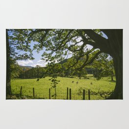 Sunlight through Oak tree and grazing sheep at Swinside. Lake District, UK. Rug