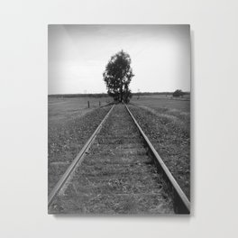 Tree tracks Metal Print