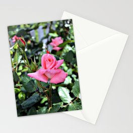 Pink Rose No. 1 Stationery Cards