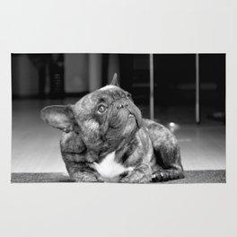 Black & White Frenchbully Rug