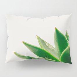 Simple Succulent Pillow Sham