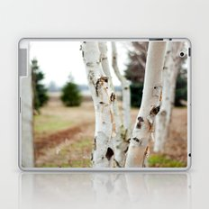 Line of Birches Laptop & iPad Skin