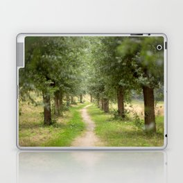 Willow Lane II Laptop & iPad Skin