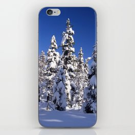 Snow covered trees in the forest. Winter day with blue sky. iPhone Skin