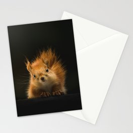 squirrel in the dark Stationery Cards