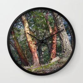 MADRONA WOODS Wall Clock
