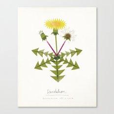 Dandelion Modern Botanical Canvas Print