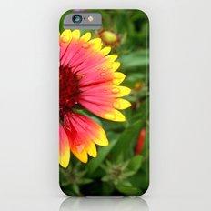 Summer Colours Slim Case iPhone 6s