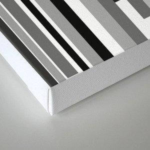 White Lines Canvas Print