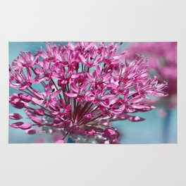 Allium pink Rug