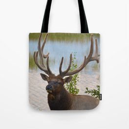 A Bull Elk in the Rocky Mountains Tote Bag