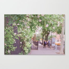West Village in Bloom Canvas Print