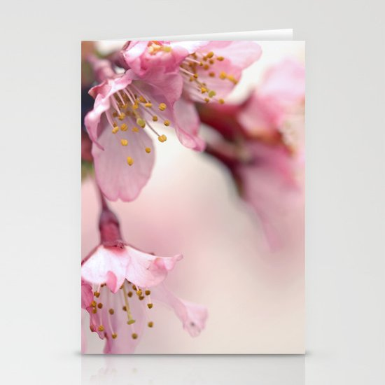 Gentle Stationery Cards