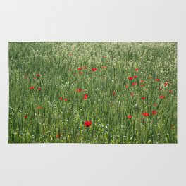 Poppy Field And Springtime Hay Meadow  Rug