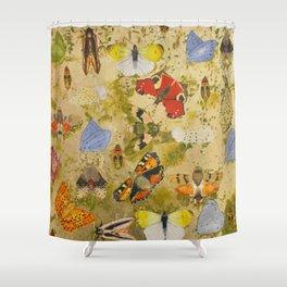 Nymphalidae Shower Curtain