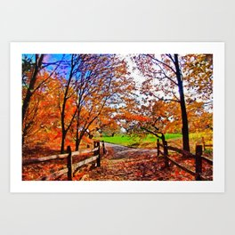 Autumn Walkway Art Print