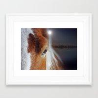 horses Framed Art Prints featuring horses  by mark ashkenazi
